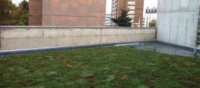 Travaux sur Toit Terrasse –  Terrasse végétalisée